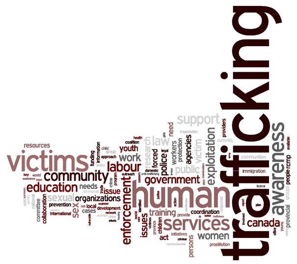 human trafficking stakeholder consultations national  word cloud