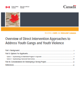 Overview of Direct Intervention Approaches to Address Youth