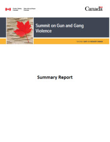 Summit on Gun and Gang Violence: Summary Report