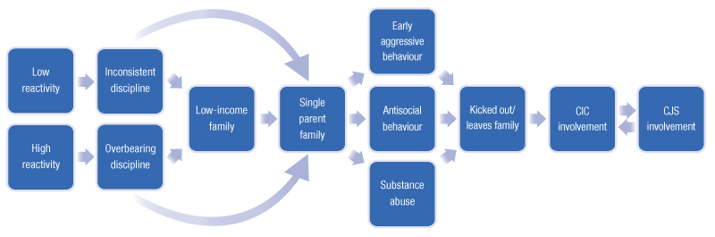 trajectory theory delinquency The general theory: self-control trajectory methods in  developmental and life-course criminology are both concerned with the study of changes  delinquency.